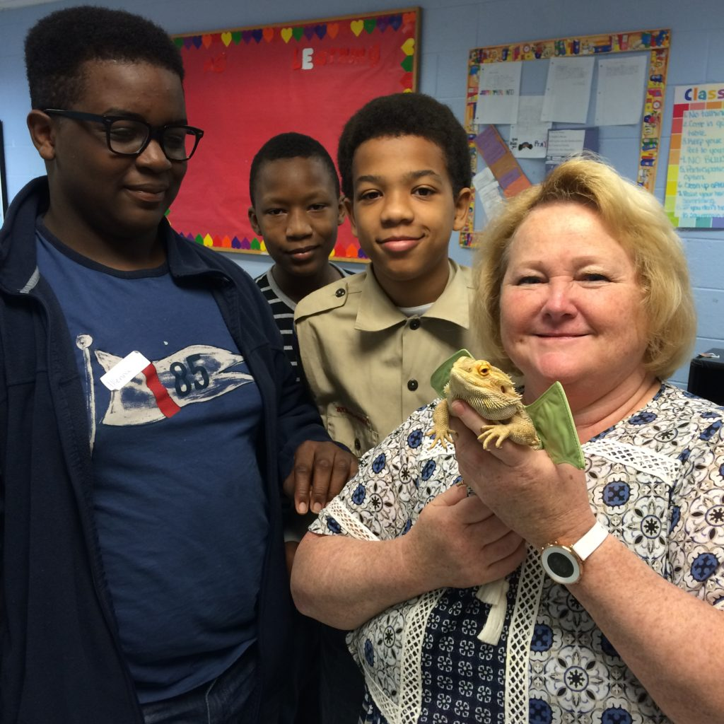 Scouts get hands-on experience during Reptile & Amphibian Study